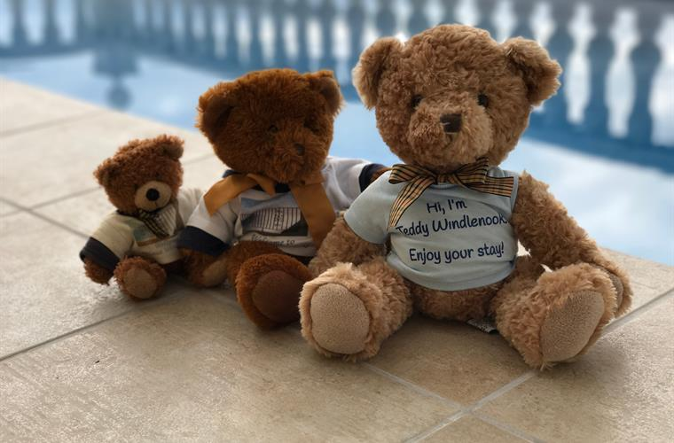Teddies love a holiday at Casa Windlenook too!