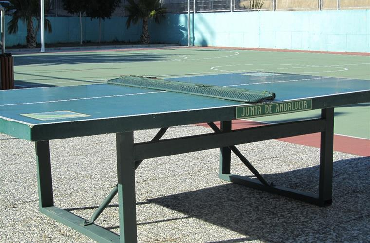 Table tennis table at rear of the building.