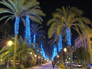 Palma with its wonderful tree lined boulevards