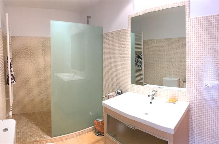 The family bath room, with large walk in shower