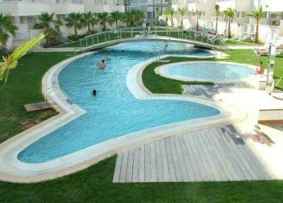 Dolphin Shaped Pool