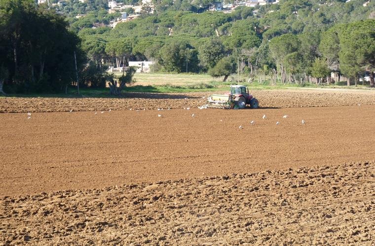 Tractor working on the fields of the villa