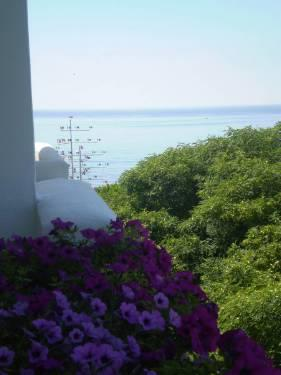 From balcony you have SEAVIEWS, PARKVIEWS AND MOUNTAINVIEWS!!!