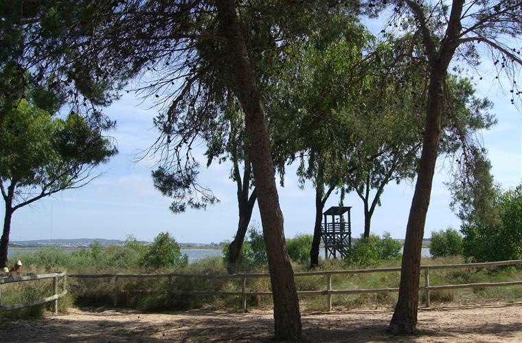 Natural park at La Mata