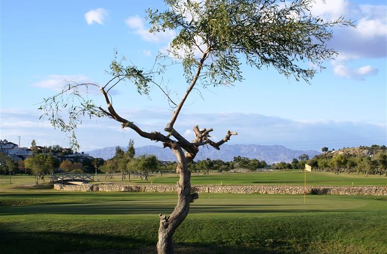 Local La Marquesa golf-course in Quesada