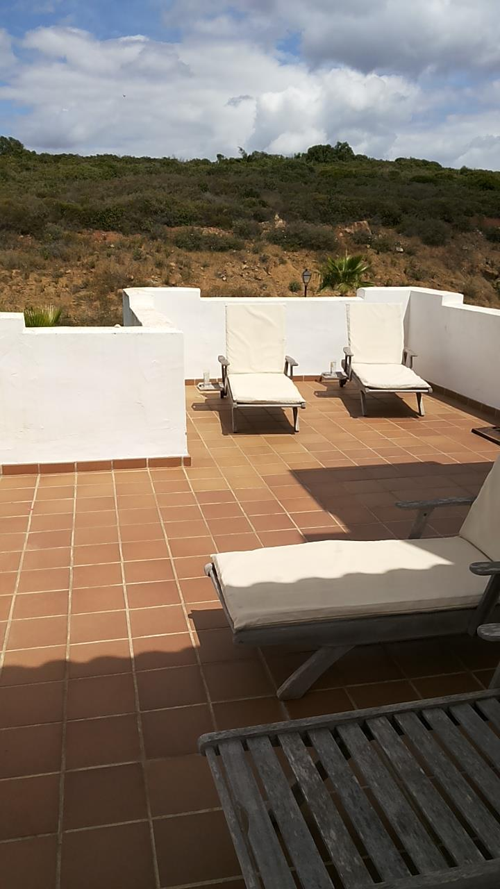 Rear terrace with loungers