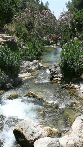 take a drive to the lovely waterfalls just north of benidorm