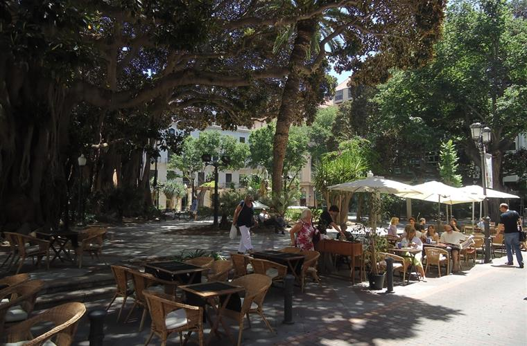 a shady square, perfect for a relaxing drink or meal