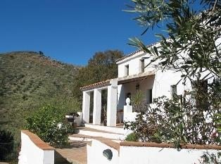 The house and terraces leading down to the pool