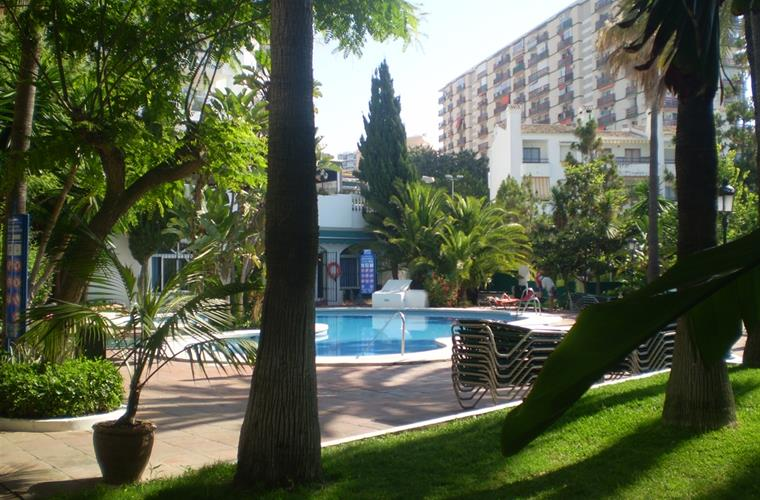 Really nice poolarea with palms and lots of sunbeds available